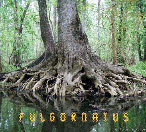 FULGORNATUS  Blaise Siwula - (saxophone) |  John Gilbert - (guitar)